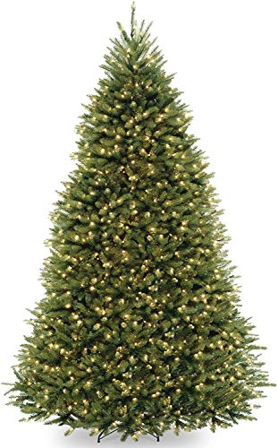 National Tree Company Pre-lit Artificial Christmas Tree | Includes Pre-strung 10 Function Multi-Color LED Lights and Stand | Dunhill Fir - 9 ft