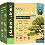 Bonsai Tree Growing Kit - Grow 4 Indoor Bonsai Trees - Plant a Garden from Seeds - Unique Gardening Gifts for Women & Men Gardeners : Unusual Gift Ideas - Adults Gardener Gifts : Plants Starter Kit