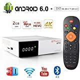 GT MEDIA GTC Android 6.0 TV Box Free to air Satellite TV Receivers 4K FTA DVB-S2/T2/Cable/ATSC-C/ISDBT Wifi 2.4Ghz BT4.0 3D H.265 MPEG-2/4 Smart TV Box