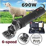 Sinbide 690W Tondeuse Electrique Professionnelle pour Mouton Animaux Mouton...