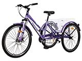 Barbella Women Adult Mountain Tricycle 7 Speed Three Wheel Cruiser Trike Bike, 24/26 Inch Adults Trikes for Seniors with Shopping Basket, Exercise Girl's Women's Tricycles (Purple, 26' Tire)