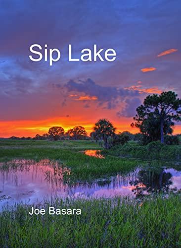 Sip Lake by [Joe Basara]