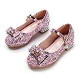 YOSICIL Zapatos de Princesa para Niñas Elsa Disfraz de Carnaval de Fiesta...