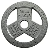 HulkFit 2-inch Iron Plate for Strength Training, Weightlifting and Crossfit, Single (25 Pounds), Silver