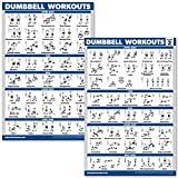 QuickFit 2 Pack Dumbbell Workout Exercise Poster - Volume 1 & 2 (Laminated, 18' x 27')