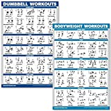 QuickFit Dumbbell Workouts and Bodyweight Exercise Poster Set - Laminated 2 Chart Set - Dumbbell Exercise Routine & Body Weight Workouts (18' x 27')