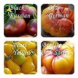 Mélange de tomates -4 types - 20 graines de'vieilles variétés' - emballées par...