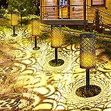 Solar Pathway Garden...image