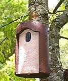 Schwegler Naturschutzprodukt Nisthöhle Typ 1B Flugloch oval Satz 2 Stück aus Holzbeton