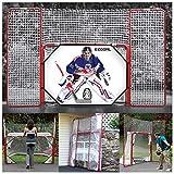 EZGoal 4' x 6' Hockey Folding Steel 2' Goal with 10' x 6' Backstop, 4 Targets Nets, a New Shooter Tutor