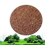 Zantec Semillas de plantas de acuario, Decoracin de hierba de agua acutica como Planta de primer plano de tanque de peces de jardn