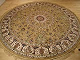 Persian Silk Brand Gold Rug Large Round Rug Beige Rugs Silk Circle Shape Area Rugs 8x8 Round Shape Area Rugs (Round Shape 8 Foot)
