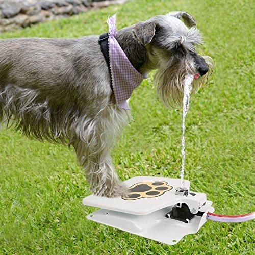 iMounTEK Hygienic Dog/Pet Geyser Water Fountain...