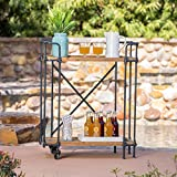 Christopher Knight Home 'Eden CKH Outdoor Barcarts, Antique