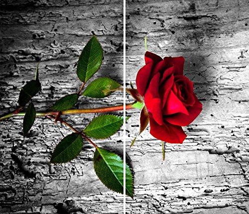 DAMU |Ceranfeldabdeckung 2 Teilig 2x30x52 cm Herdabdeckplatten Blumen Elektroherd Induktion Herdschutz Spritzschutz Glasplatte Schneidebrett Rot Natur