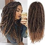 AISI BEAUTY Marley Hair Crochet Hair 3 Packs Braiding Marley Twist Hair 18' Synthetic Kinky Hair for Braiding Hair Mixed Color for Twists (18'' T1B-27)