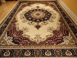 Stunning Silk Rug Persian Traditional Area Rugs 7x10 Living Dining Room Ivory Rugs Luxury 6x9 Silk High Density Living Room Rugs(Large 7'x10')