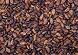 Media Storehouse 252 Piece Puzzle of Cocoa Beans, La Maison du Cacao, Pointe-Noire (12506539)