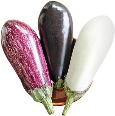 Homegrown Eggplant Seeds, 300 Seeds, Topsellers Eggplant