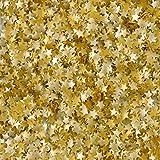 Wilton Edible Glitter, Gold Stars, 0.04 Ounce