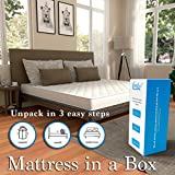 Customized Comfort Club Dual Side Usable Natural Latex Mattress in A Box; 84 X 66 X 8 Inches; White