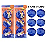 Pic AT-3 3-Count Ant Traps (2 Pack)