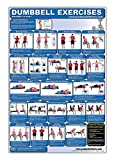 Laminated Dumbbell Exercise Poster/Chart - Shoulders and Arms - Created by Fitness Experts with University Degrees in Exercise Physiology etc. - ... - Fitness Poster - Dumbbell Workout Chart