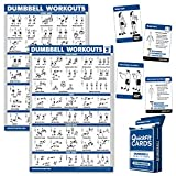Palace Learning 3 Pack: Dumbbell Workout Exercise Posters Volume 1 & 2 + Dumbbell Exercise Playing Card Set (Laminated)