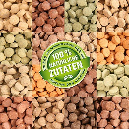Teichpoint 1000 ml (700g) Premium TOP Futtertabletten Opti-Mix 17, Tablettenfutter Mix für Aquarium Zierfische Tabletten
