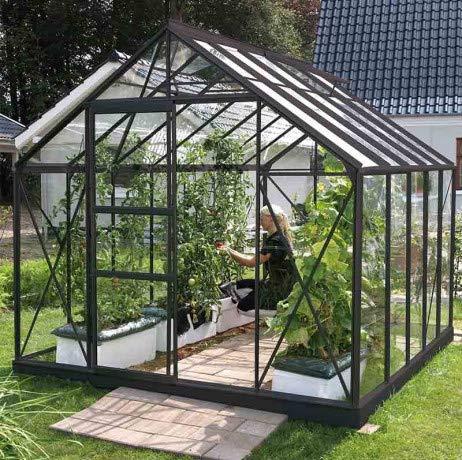 Serre en verre trempé Carvi - 8.25 m², Couleur Anthracite