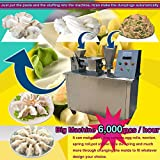 TX 6000pcs/h 100mm Automatic Dumpling Machine Stainless Steel...