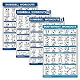 Palace Learning 4 Pack - Dumbbell Workout Posters Volume 1, 2 & 3 + Bodyweight Exercise Chart - Set of 4 Posters (Laminated, 18' x 24')