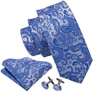 Barry.Wang Paisley Tie Set Hanky Cufflinks Neckties for Men Woven Silk Fashion (Blue 1618)
