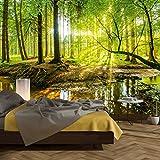 murimage Papier Peint Forêt 3D 366 x 254 cm Colle Inclus Photo Mural Bois...