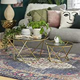 Millie Glass Nesting Coffee Tables in Clear Glass and Gold