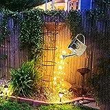 Star Shower Garden...image