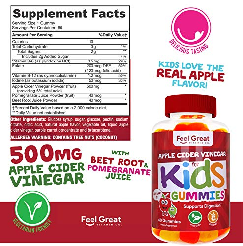 Feel Great Vitamin Co. Apple Cider Vinegar Gummies for Kids | Digestive & Immunity Support* | Healthy Gut Support for Children* | Natural Digestive Enzymes & Digestive Support for Boys and Girls 2