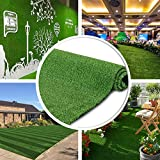 · Petgrow · Synthetic Artificial Grass Turf 5FTX8FT, Indoor Outdoor Balcony Garden Pet Rug Turf Home Decor, Faux Grass Rug Carpet with Drainage Holes