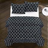 Casa Carmen All Season Ultra-Soft Trellis Geometric Pattern Alternative Reversible Easy-Wash Lightweight Microfiber Comforter Set, King, Black