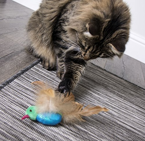 SmartyKat, Hum Singer, Electronic Sound Cat Toy, Interactive Chirping Hummingbird, with Catnip and Feathers, Battery Powered