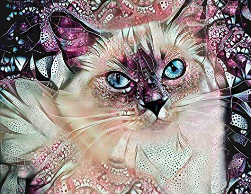 Pink and Silver Ragdoll Cat Fine Art Print - Abstract Wall Decor Poster 8.5 x 11