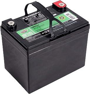 Interstate Batteries 12V 35AH Sealed Lead Acid (SLA) AGM Deep Cycle Battery (DCM0035)..