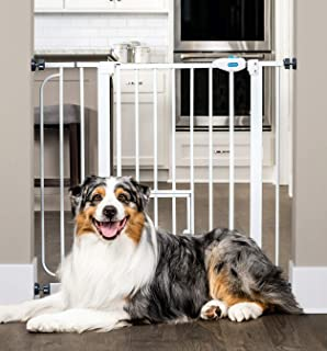 Carlson Extra Wide Walk Through Pet Gate with Small Pet Door, Includes 4-Inch Extension..