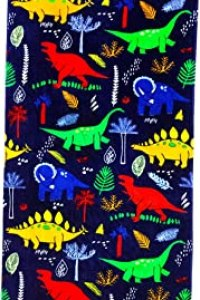 Best Dinosaur Pool Towel For Kids of March 2021