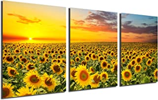 Sunflower Canvas Print Wall Art – Sunset Landscape Pictures Modern Painting Sunset..