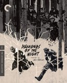 Diamonds of the Night The Criterion Collection