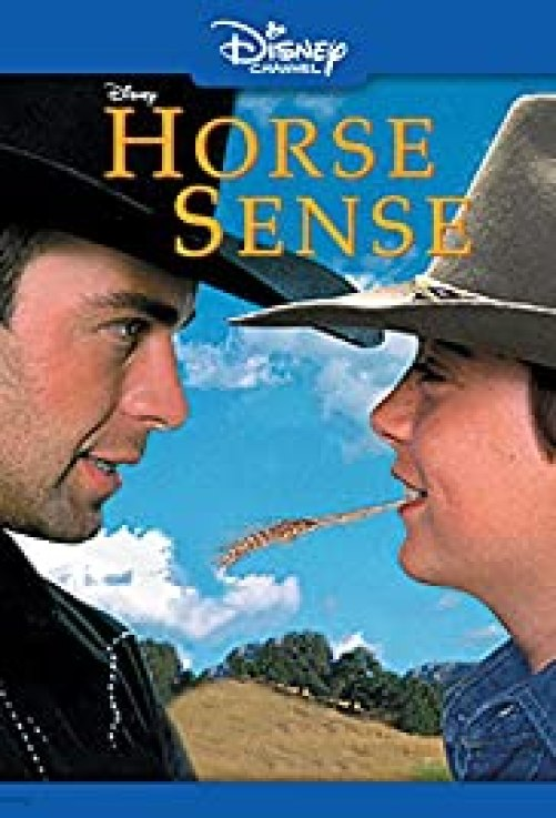 "Poster Image of the Disney Channel movie ""Horse Sense"""