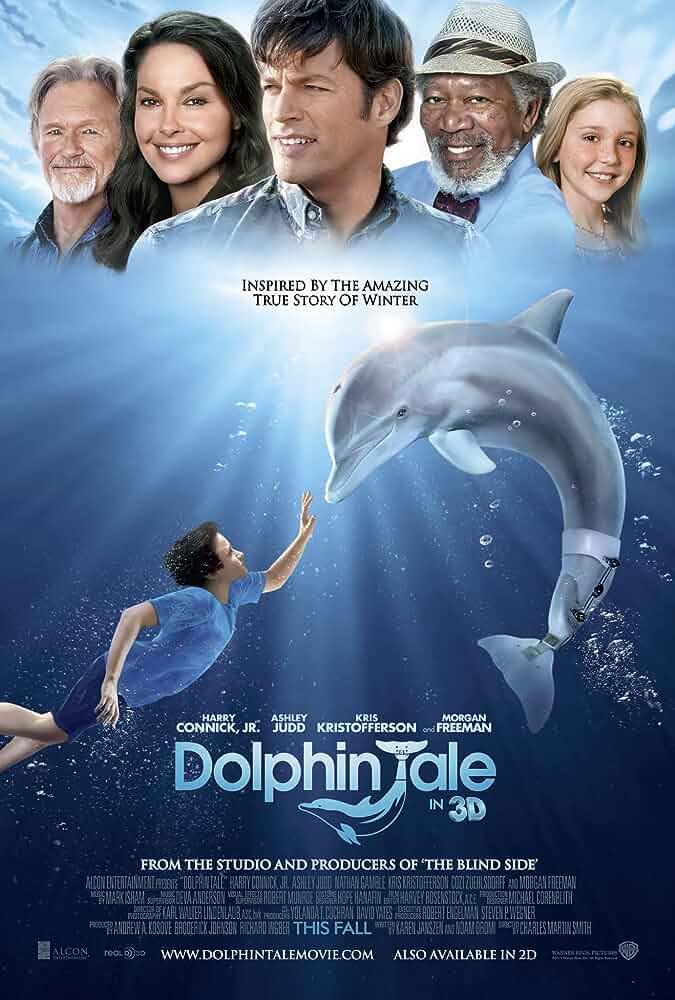 Download Dolphin Tale (2011) Dual Audio (Hindi-English) 480p [400MB]    720p [900MB]