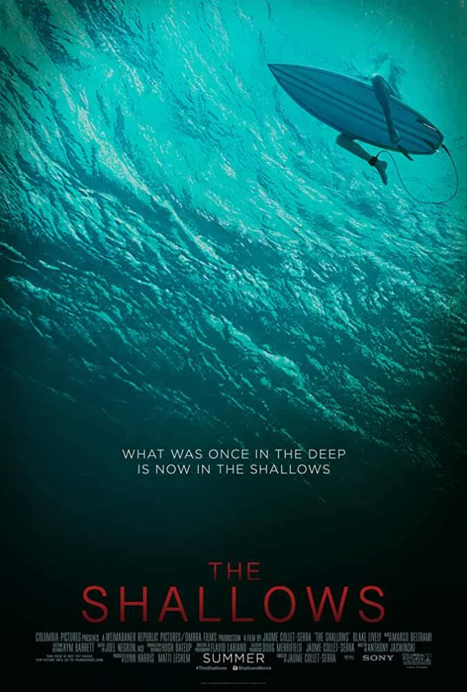 The Shallows 2016 Dual Audio Download HD on www.movies365.co