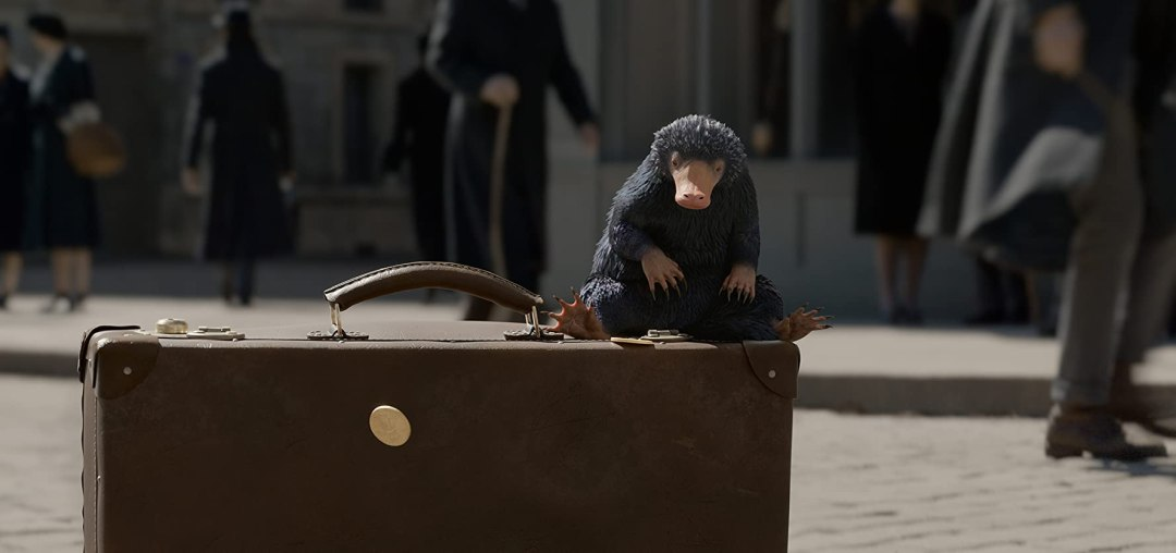 """Beast MasterIt wouldn't be Fantastic Beasts without the creatures and Redmayne assured us there will be plenty to enjoy. """"Probably been my favorite scene to shoot so far involves baby Nifflers,"""" said Redmayne of the mole-like, treasure-seekers (seen here). """"They just cause havoc along with new creatures that are as unique, useful, and dangerous — if not more so — than in the first film."""""""